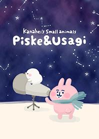 觀星達人Piske和Usagi