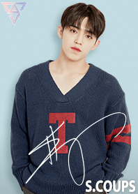 SEVENTEEN Themes S.COUPS