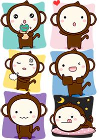 Monkey Colorfull