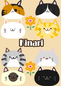 Kinari Scandinavian cute cat