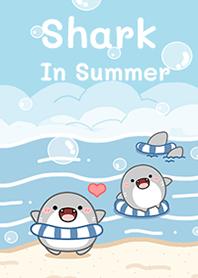 Shark in summer!
