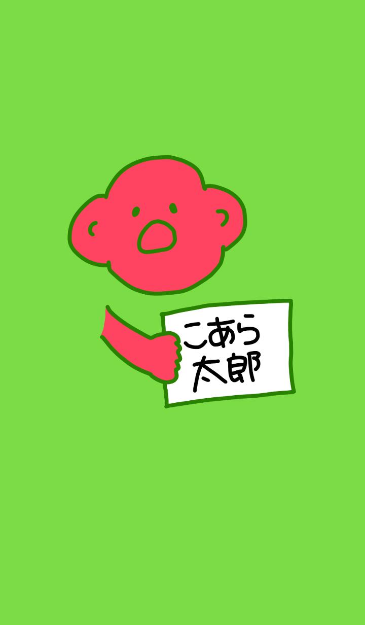 Koara Taro Black x Green 1