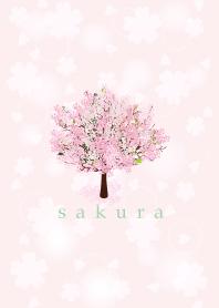 Sakura in spring 19