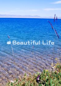 美麗人生-風景