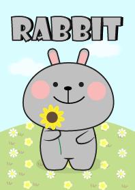 So Lovely Gray Rabbit Theme