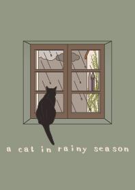 雨季的貓咪 + 白色 [os]