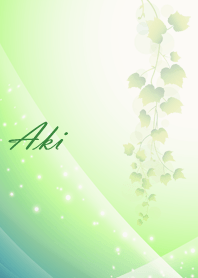 No.0040Aki Beautiful Lucky Theme