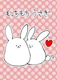fluffy rabbit.