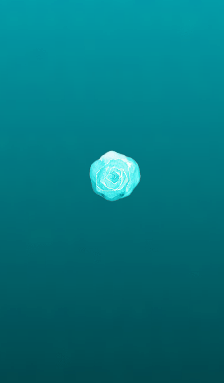 Simple cabbage 3