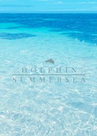 SUMMER SEA HAWAII 19 -BLUE DOLPHIN-