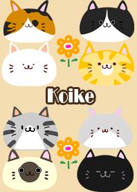 Koike Scandinavian cute cat