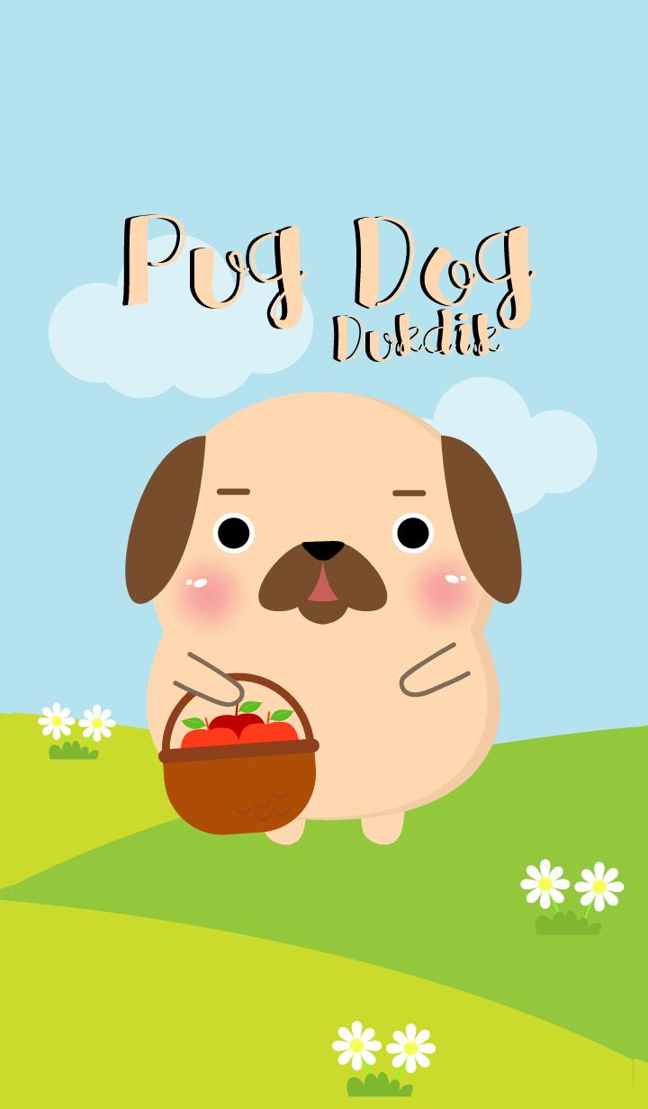 Poklok Pug Dog Dukdik Theme