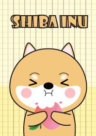 Minamal Shiba Inu Dog 2