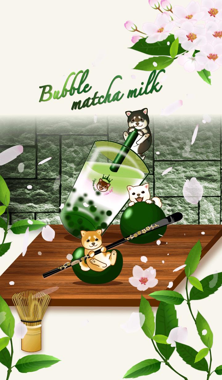 Bubble cherry matcha milk (Shiba dog)