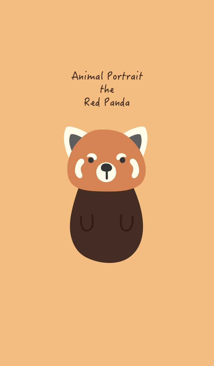 Animal Portrait - The Red Panda