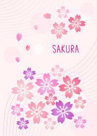 Cherry Blossoms - Japan-joc