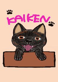 KAIKEN(Japanesedog)