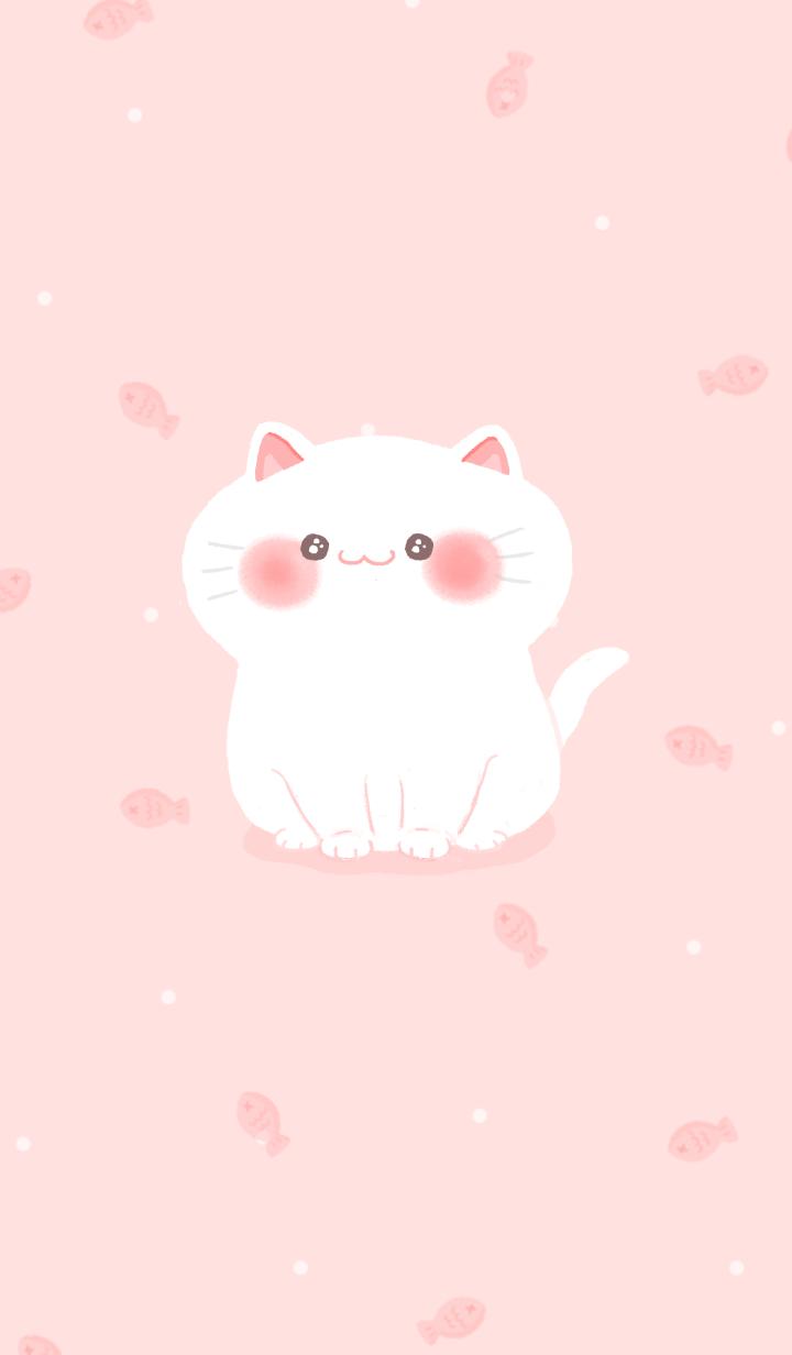 peep-po kitty