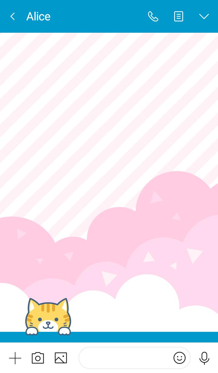 かわいい♥️ネコちゃん(茶トラ白猫)