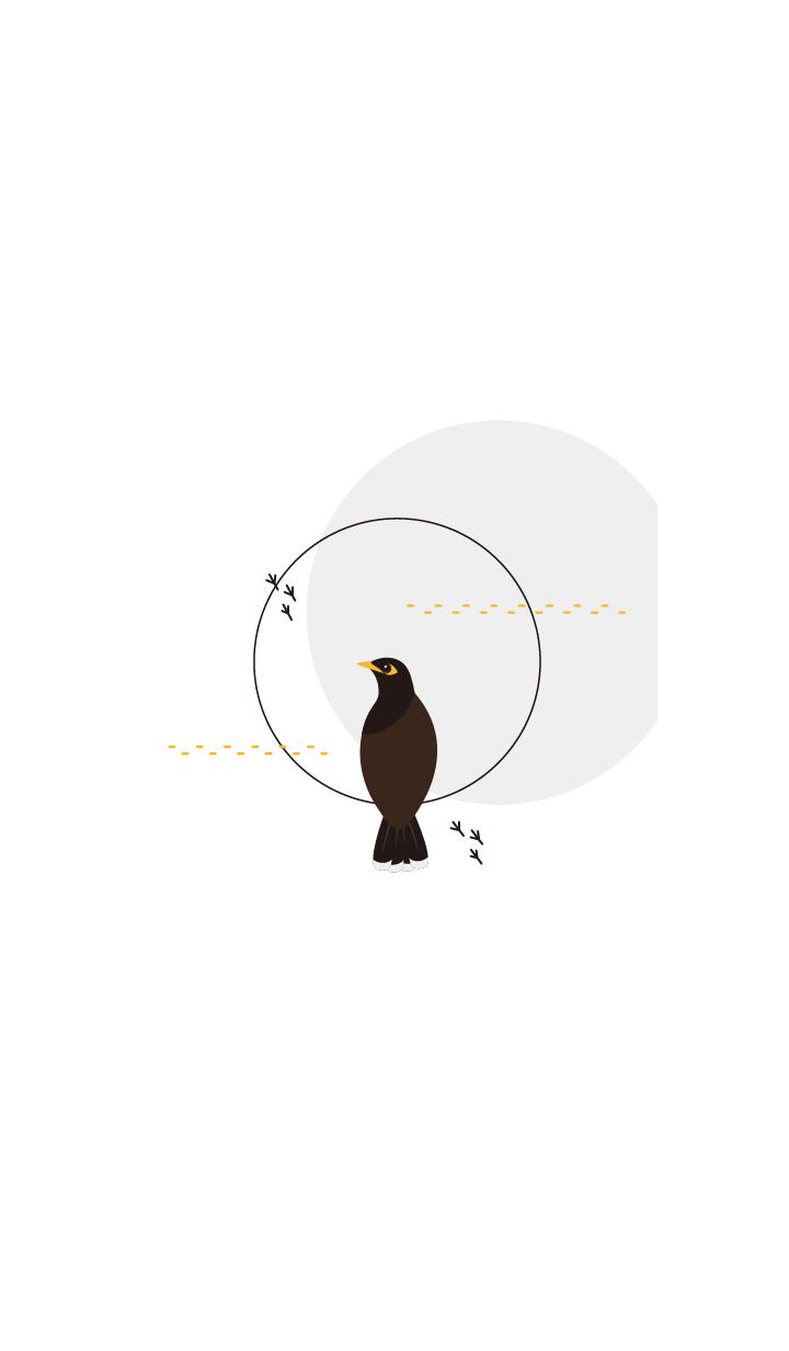 Simple bird life