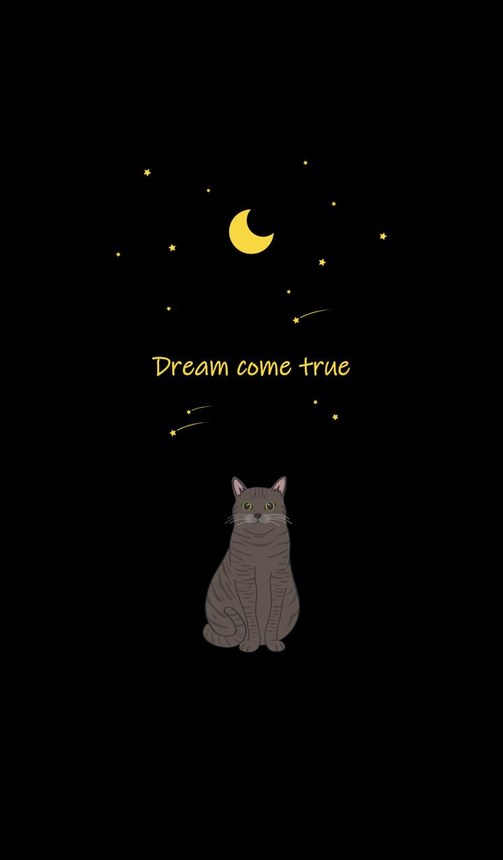 달 유성(얼룩 고양이)