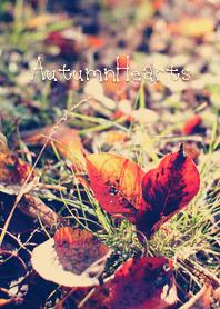 ธีมไลน์ AutumnHearts