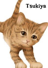 ธีมไลน์ Tsukiya Cute Tiger cat kitten