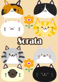ธีมไลน์ Sorata Scandinavian cute cat