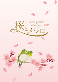 ธีมไลน์ Cherry Blossom x White-eye