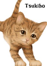 ธีมไลน์ Tsukiho Cute Tiger cat kitten
