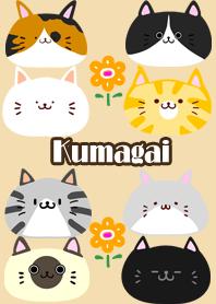 ธีมไลน์ Kumagai Scandinavian cute cat